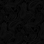 10402-12 Night & Day Paisley Black
